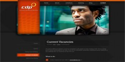 CDP--Information-Management