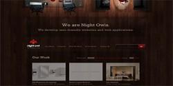 Night-Owl-Interactive